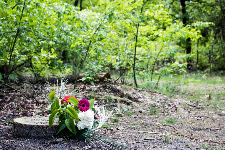Natuurbegraafplaats - Natuurbegraafplaats in Brabant.<br /> <br /> @37mm  (18-55)<br /> f5,0  1/60<br /> ISO100
