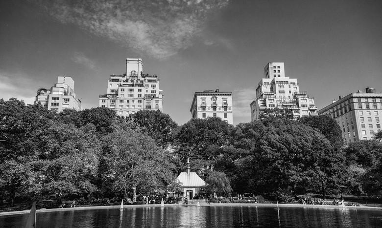 City scape - Central Park