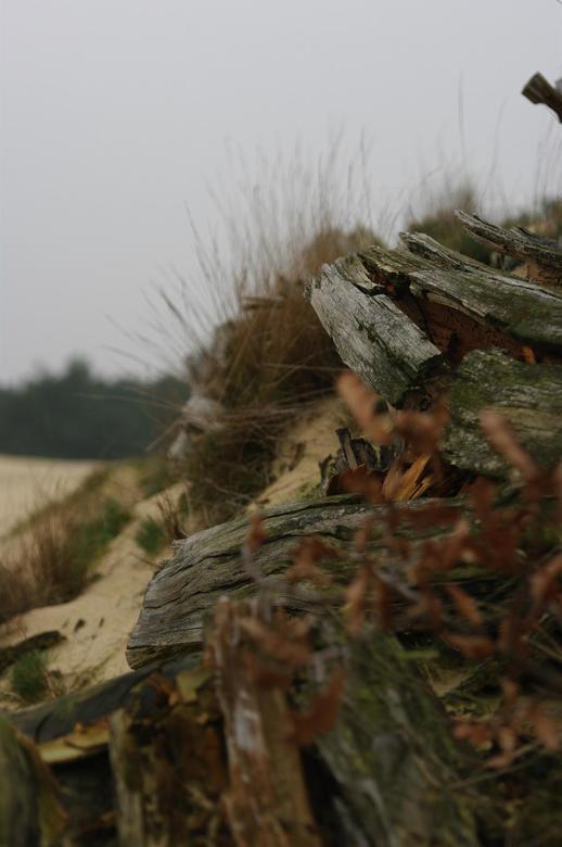 Zandverstuiving Harderwijk -