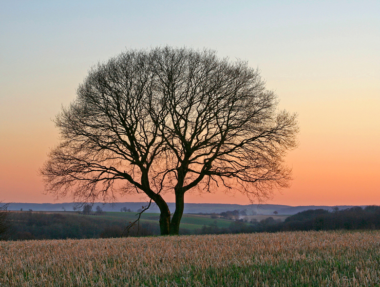 zonsondergang - Zonsondergang