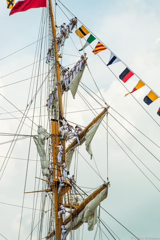 Sail - Klimmen - De bemanning van de Esmeralda zijn onderweg naar hun positie op de ra&#039;s.<br /> <br /> Even in het groot bekijken, dat is veel