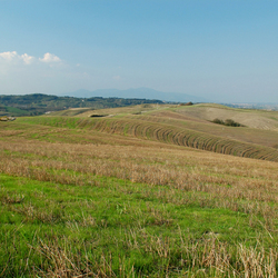 ** Toscane **