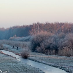 22-01-2017 (6)De eenzame wandelaar.