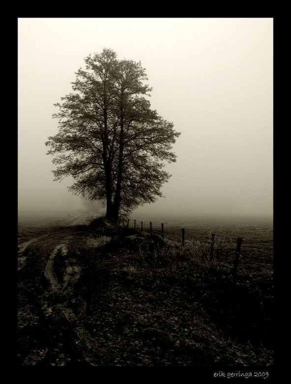 mist -