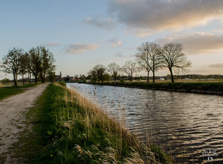 Hertog-willem pad  -