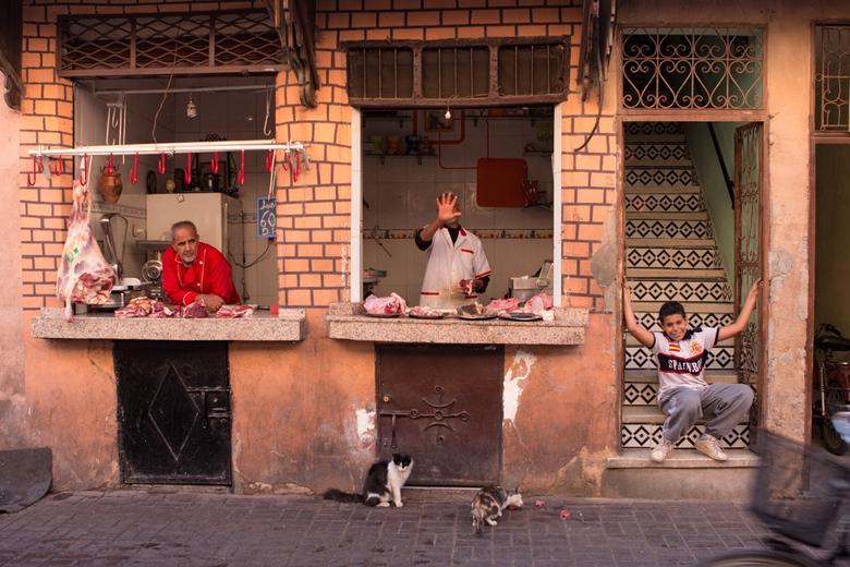 Vlees! - Slagers in Marrakesh, de straatkatten profiteren mee.