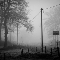Collinghorst in de mist DSC 2841-2 Jos Ouwerkerk