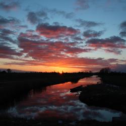 Winterzon in de Bergermeer polder