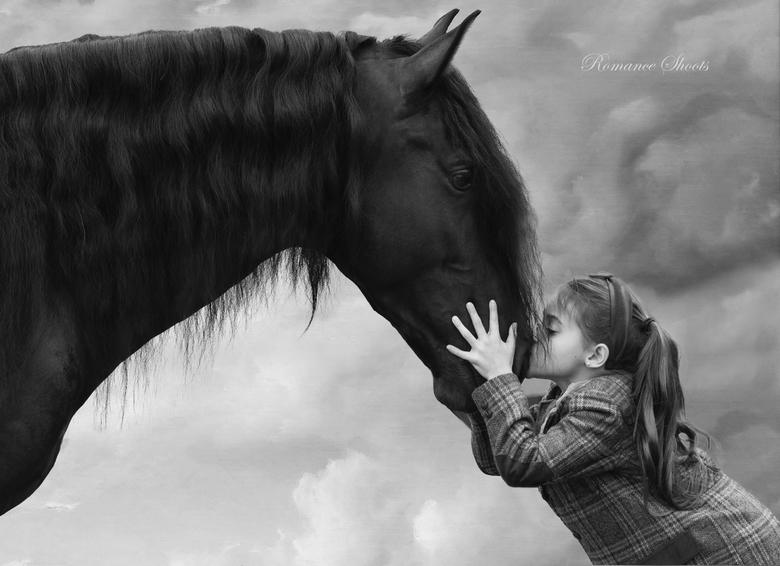 Horselove  -