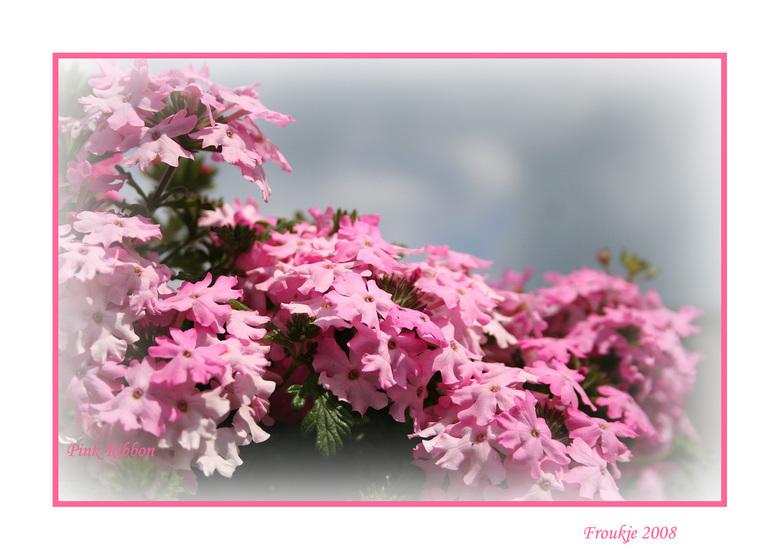 Pink Ribbon -