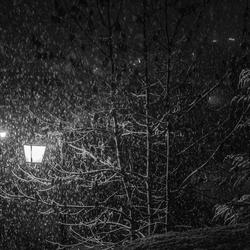 Zwart wit van sneeuwval bij nacht
