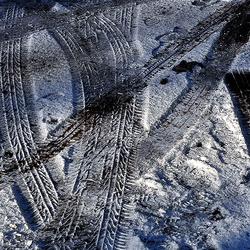 sporen in de sneeuw 2 1001300084nw