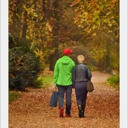 Tiergarten Berlin....Kontrast im Herbst....
