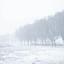 Hollandse winter landschap