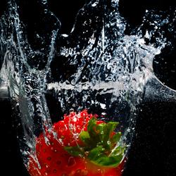 Splash 2.0