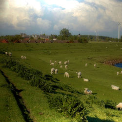Mijn dorp achter de dijk.