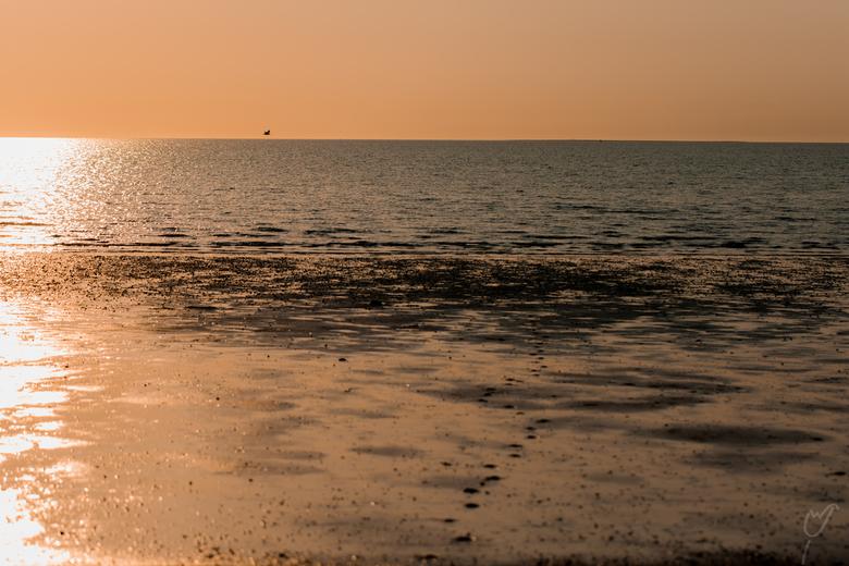 zon, zee,strand..als alle badgasten weg zijn, komt de fotograaf - Op een enkele vogel na, niemand meer te bekennen, terwijl het licht 's avonds z