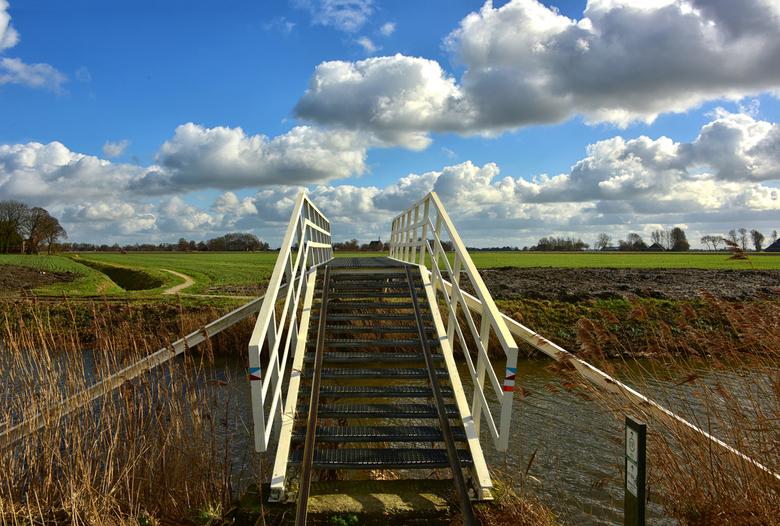Noord Groningen, - tussen Oldenzijl en Uithuizen.