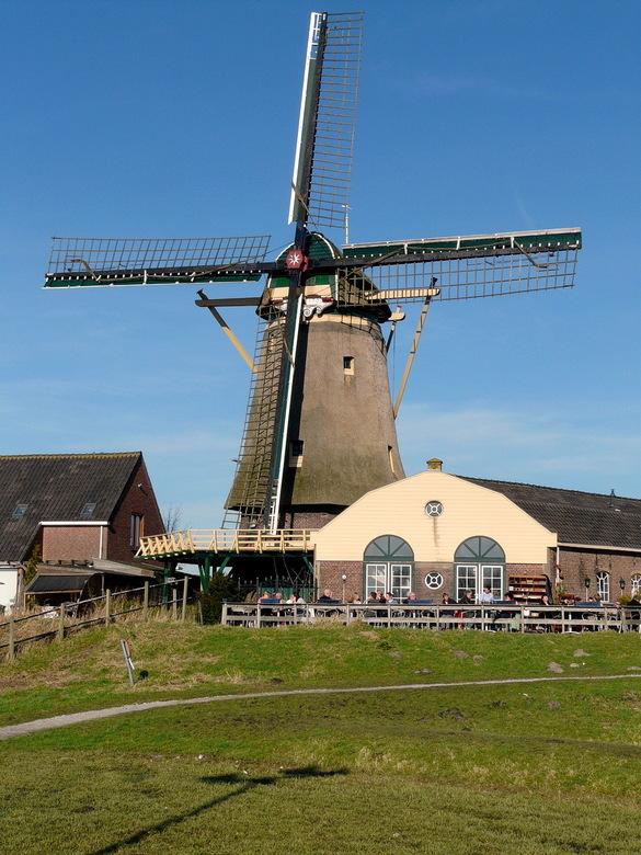 Korenmolen Windlust, - in Nootdorp (gemeente Pijnacker). De molen is een rijksmonument en staat aan de rand van de bebouwde kom van Nootdorp, langs de