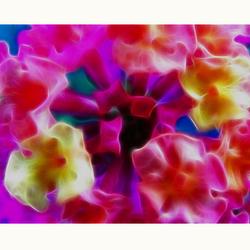 Nature Art 40-Colorfull