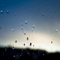 Rain Droplets On The Window