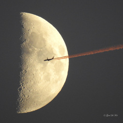 Flying To The Moon...