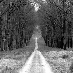 Eindeloos wandelpad