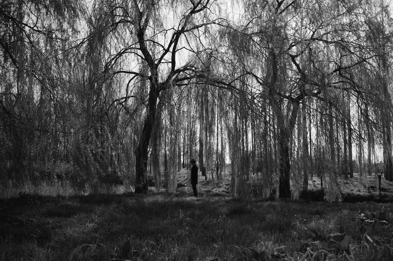 depression - Kayleigh Bogaars photography