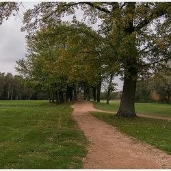 Golfterrein in Hasselt 1