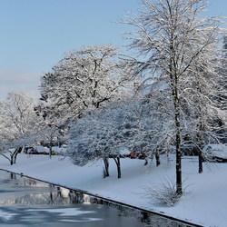 winter pracht.