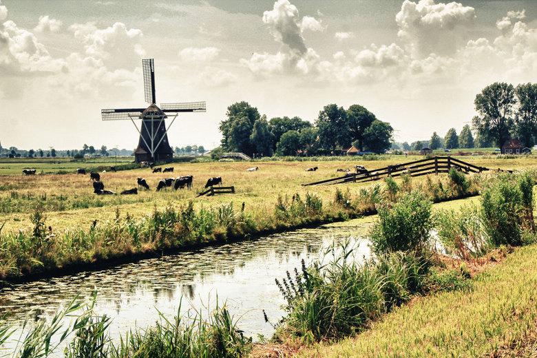 molen1ZM.jpg - Fries landschap bij Leeuwarden.