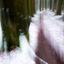 pak sneeuw