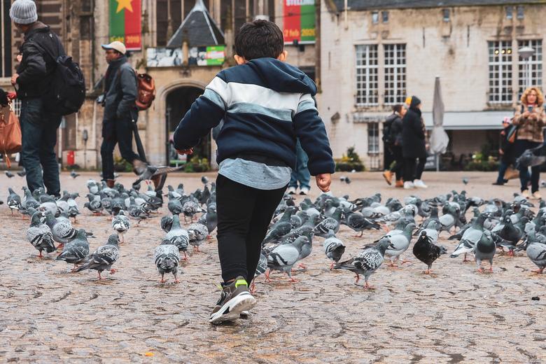 Duiven vangen - Op de dam rende dit jongetje achter de duiven aan.
