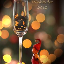 Twinkel wensen voor 2012