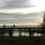 P1100063 Ochtendsfeer  brug  bij de Zijde Schipluiden noord  31 dec 2019