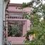 pink serre
