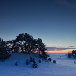 kootwijkerzand sneeuw3
