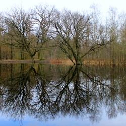 winter spiegeling