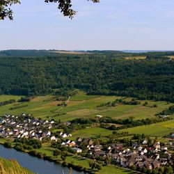 Moezel in Duitsland