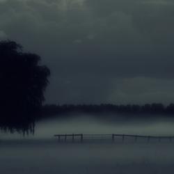 Mist(ery) Land