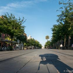 Sevilla Calle San Fernando
