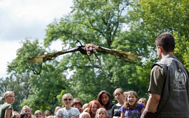 Bastaardarend vliegt over een groep kinderen - Gemaakt tijdens de roofvogelshow van Valkenier Rijssen op woensdag 11 augustus 2010. Op het moment van