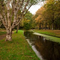Herfst, Zuiderpark