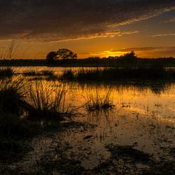 avondrood in Brabant de Kuikseindse Heide