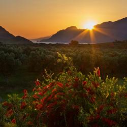 Kreta tegenlicht
