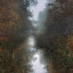 Grauwe herfstdag bij het water.