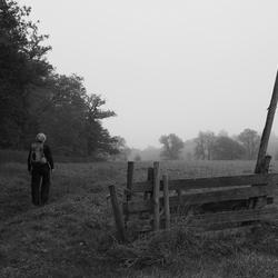 Eenzaam hek