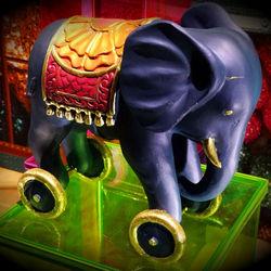 olifant met cirkel eromheen.jpg
