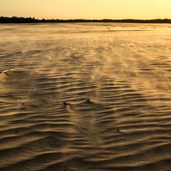 zomerstorm in de Loonse en Drunense duinen