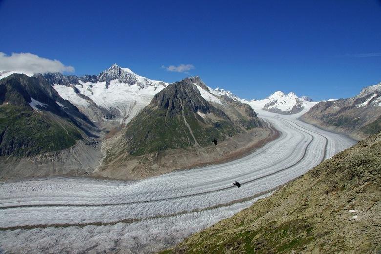 aletschgletschr - de aletschgletscher vanaf de eggischhorn.
